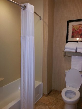 Homewood Suites Decatur-Forsyth: Bath