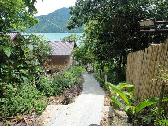 Phi Phi Sea Sky Resort: way down to the beach