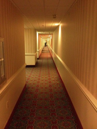 DoubleTree by Hilton Hotel and Suites Charleston - Historic District: Long creepy hallways