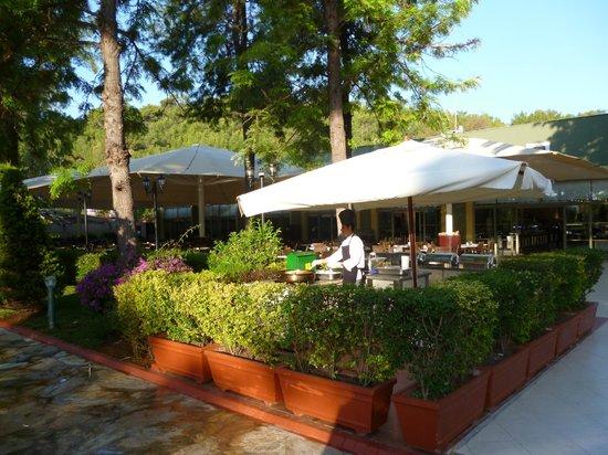 Euphoria Tekirova Hotel: Завтрак