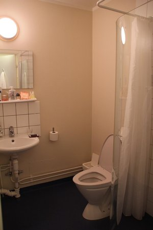 Freys Hotel Lilla Rådmannen: Bathroom I
