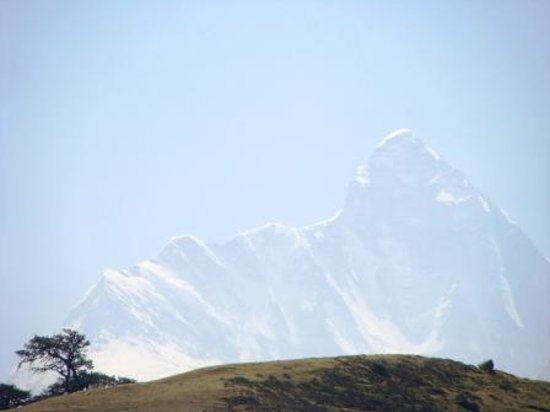 Joshimath, India: Nanda devi seen from Gorson meadows Auli.