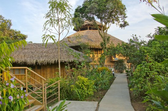 La Selva Amazon Ecolodge: walking to my bungalow