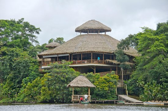 La Selva Amazon Ecolodge: La Selva Lodge