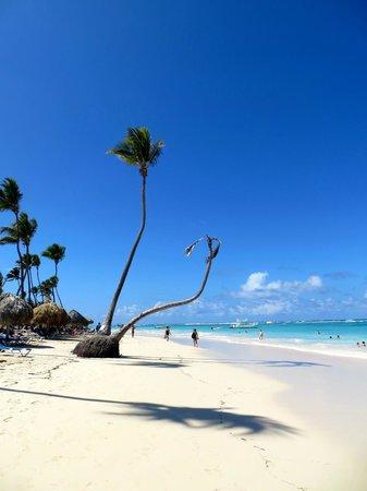 Caribe Club Princess Beach Resort & Spa: playa