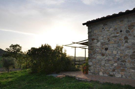 Agriturismo Fattoria di Statiano: tramonto ...