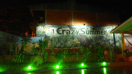 Crazy summer: pileta