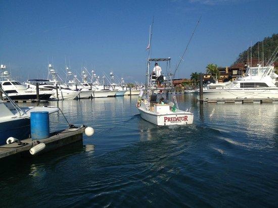 Jaco Tours & Sportfishing: Fishing Trip Costa Rica