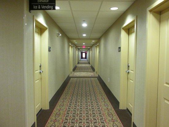 Hampton Inn & Suites Prattville: beautiful new property