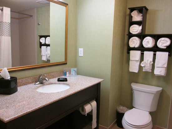 Hampton Inn & Suites Prattville: great bathroom