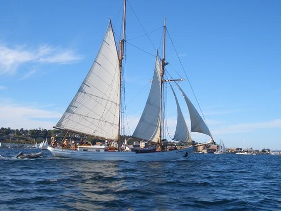 Huber's Inn Port Townsend: Sailing Ships in Port Townsend Bay