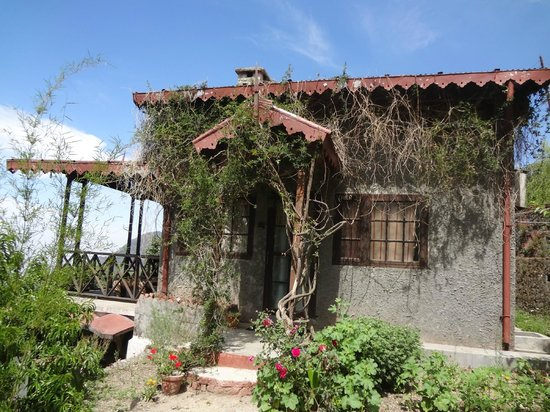 Jungle Lore Birding Lodge: The Lovely Cottages