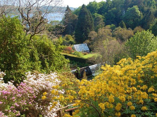 Arduaine, UK: Springtime from the Cliff Path