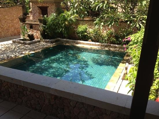 The Oberoi, Lombok: notre piscine privée