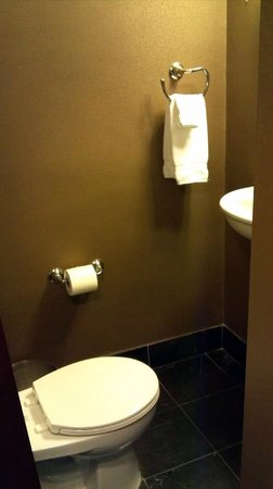 Hotel Viking: You can reach the sink from the toilet...