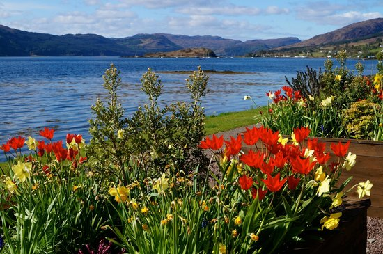 Rockvilla Guest House: Spring at Lochcarron