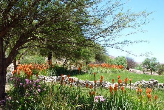 Cerro Chico : El parque