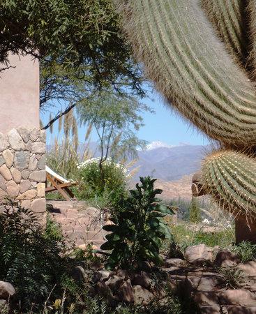 Cerro Chico : El Chani desde el hotel
