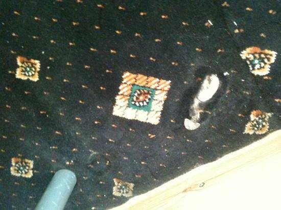 Beaconsfield Hotel: interesting feature.. exposed pipe breaking through carpet...