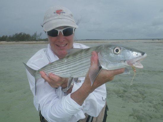 Small Hope Bay Lodge: andros bonefish