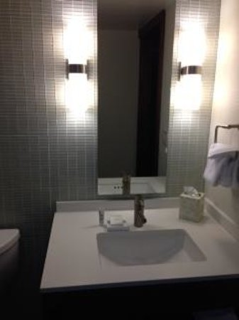 Hilton Columbus Downtown: Powder room