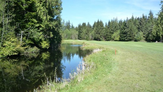 Storey Creek Golf Course: Brutal Par 5 550 yard dogleg