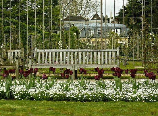 French Garden Picture Of Albert Kahn Musee Et Jardins