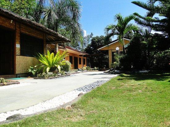 Susan's Place: entrance