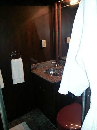 Pullman Rail Journeys: Room A is the only one with bathroom and shower