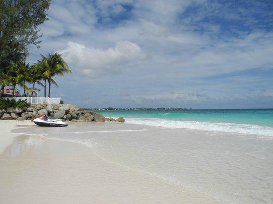 Bougainvillea Barbados Maxwell Beach Looking Towards The Wedding Point Conchita