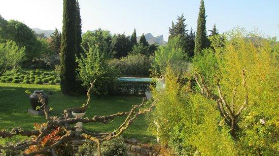 Le Mas Des Carassins Hotel : View from Les Baux room in annex