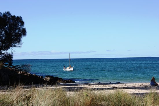 Bridairre B & B : Take a stroll along the walking tracks to the beaches