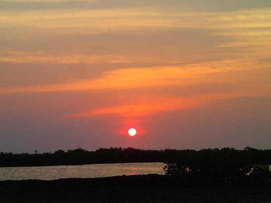 Blackbird Caye Resort: Sunset