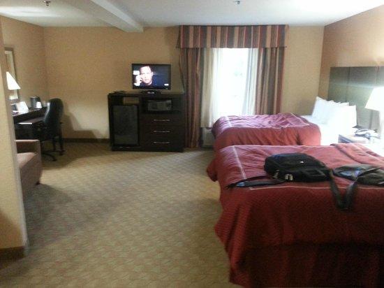 Comfort Suites Brunswick: Room