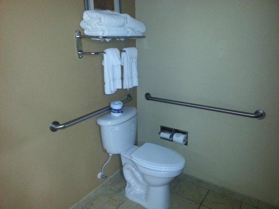 Comfort Suites Brunswick: Toilet