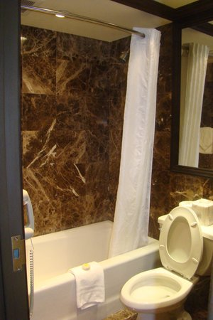 The Belvedere: Marble bathroom