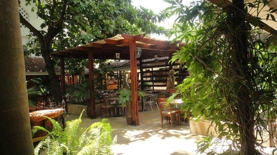 Sala Thai Restaurant : Lunch at Outdoor Restaurant in Oyster Bay Shopping Center