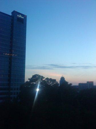 Hilton Garden Inn Atlanta Perimeter Center: Hilton room view