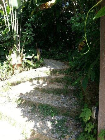 Pousada Naturalia: Escada