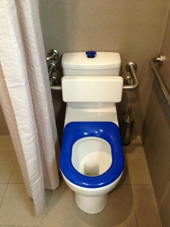 Aloha Byron Bay : Unbelievably ugly toilet