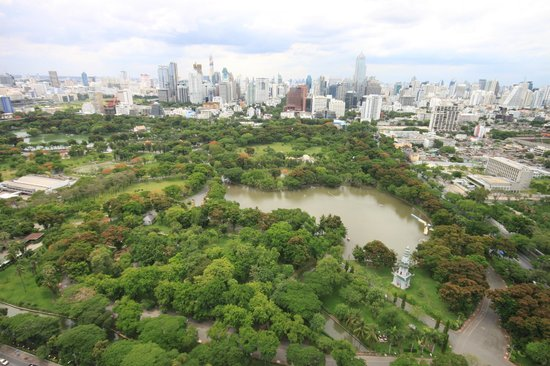 SO Sofitel Bangkok: amazing view of lumpini park from the rooftop