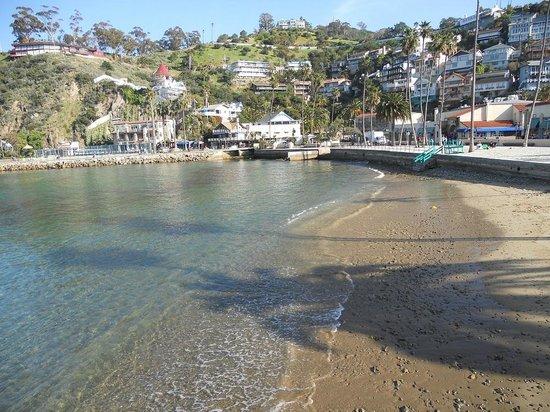 Catalina Island Inn: Avalon, so pretty!
