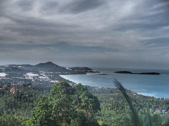 Jungle Club: Uitzicht op Chewang