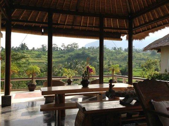 Surya Shanti Villa: Open space