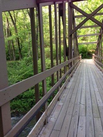 Historic Banning Mills: Bridge over river