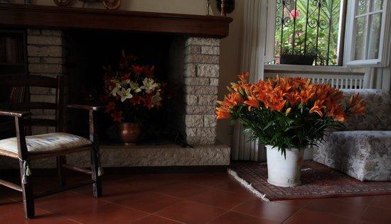 Hotel Degli Olivi: Il salotto col caminetto