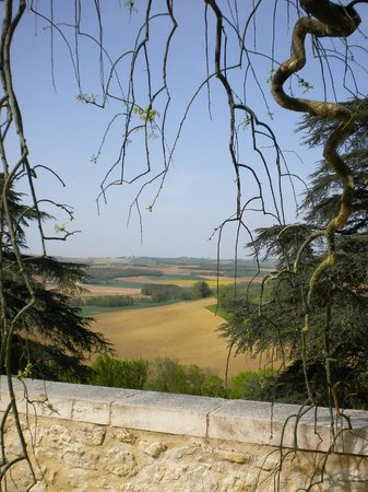 The Gascony French Cookery School: The view