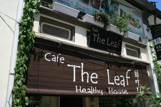 The leaf healthy Recipes: Front