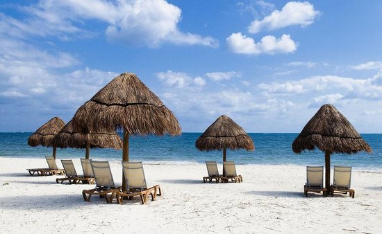 Ocean Coral & Turquesa: Area and Local Attractions - Beach