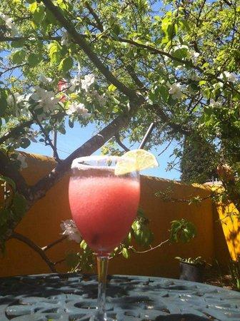 Rhubarb Margaritas at Tita's